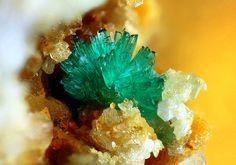 Ktenasite Locality: Torrebelvicino, Vicenza Province, Veneto, Italy 0.6 mm group of Ktenasite crystals. Collection Paolo Chiereghin Photo Matteo Chinellato