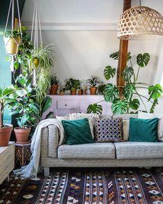 Living Room Interior Design Indoor Plants