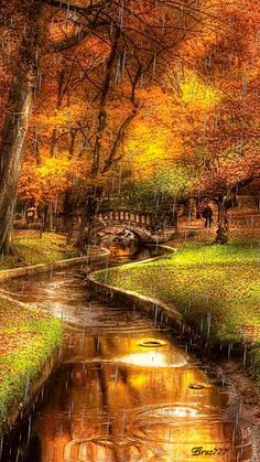 Autumn or fall landscape with orange leaves and a gentle river with a scenic bridge.
