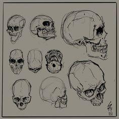 Sketch_016. Skulls listening to Metallica couldn't think of something better to practice on. #digitalillustration #doodle #digitalArt #sketchbook #digitalsketchbook #Kitra #practice #skull #rock #grimreaper #vzla #hopeful #ilustrador #illustrator #paint #drawing #tablet #computer #stayontarget #Metallica #metal #anatomy #anatomia