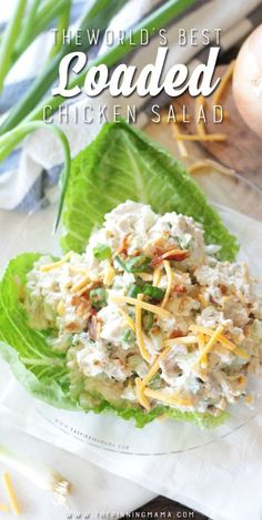 World's Best Loaded Chicken Salad Recipe - This is loaded with cheddar cheese, fresh bacon crumbles, green onions, and a secret ingredient that makes it so creamy and delicious!