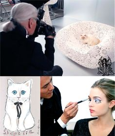 Que os gatos vão dominar o mundo, todos nós já sabemos, e isso começou a acontecer. A gatinha de Karl Lagerfeld, que irá ganhar seu próprio livro, como já noticiamos aqui, agora é estrela de uma linha de maquiagens da marca Shu Uemura, marca japonesa controlada pela L'Oréal. Choupette já tem fotos para a campanha tiradas pelo próprio Karl, e a coleção será lançada no final do ano!  #Choupette #Shupette #ShuUemura #Karl #AndressaCastro #ModaFeminina