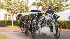 Bride and Groom in Horse and Carriage at Pinehurst Resort in Pinehurst NC