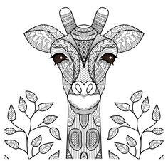 Illustration about Zentangle giraffe head for coloring page, shirt design and so on. Illustration of decoration, giraffe, africa - 59688565 Giraffe Coloring Pages, Mandala Coloring Pages, Adult Coloring Pages, Coloring Books, Free Coloring, Coloring Sheets, Colouring, Giraffe Head, Cute Giraffe