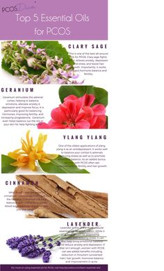 Top 5 Essential Oils for PCOS [Infographic] - PCOS Diva