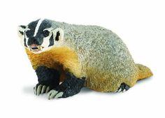 Wild Safari North American Wildlife American Badger