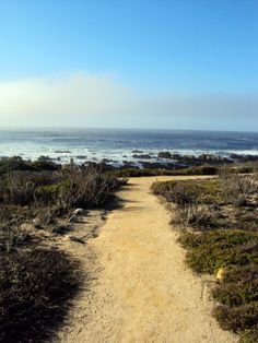 Monterey - California (Whichever way you take...the view is breath taking!!!)