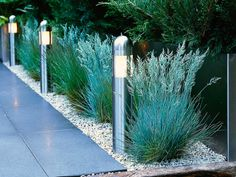 Stainless steel posts light and define this entrance path for both day and night. Outdoor lighting can be both creative and functional. Lighting creates a glow that lights a pathway or puts focus on a garden feature after dark.