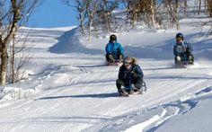 Dagali Fjellpark har Norges lengste kjelkeløype på 1850 meter. Man kjører heisen opp med spesialbygde rattkjelker for voksne, så går ferden nedover den lange kjelkeløypa med lange rettstrekninger og doserte svinger som gir høy fart til den som tør. Rafting, Mount Everest, Snow, Mountains, Manga, Nature, Travel, Outdoor, Outdoors