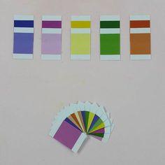 Colorbox 3'e hazırlık. Çektiğimiz renk hangi rengin tonuysa onun altına koyuyoruz. 17aralık2015 #ipek31aylik
