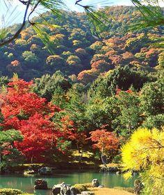 Instagram media by kyoto_fan_jp - 🔸 〜天龍寺 曹源池庭園(過去pic) 🔸 Location:KYOTO/JAPAN 🔸 #天龍寺#曹源池庭園#特別名勝#庭園#写真好きな人と繋がりたい #写真撮ってる人と繋がりたい #キタムラ写真投稿 #嵐山##arashiyama#autumn#fall#icu_japan #ig_japan #igersjp #ig_asia #jp_gallery #japan_of_insta #japan_daytime_view #lovers_nippon #wu_japan #tokyocameraclub #phos_japan #はなまっぷ紅葉2016 #team_jp_西 (京都)