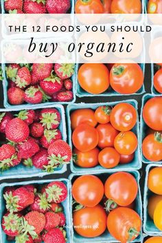 The Benefits of Eating Organic // Four Wellness Co. – Dirty Dozen: the top 12 foods you should buy organic // The health benefits of eating organic food – Healthy Living Tips, Healthy Tips, Healthy Recipes, Simple Recipes, Healthy Cooking, Healthy Foods, Wellness Tips, Health And Wellness, Cucumber Benefits