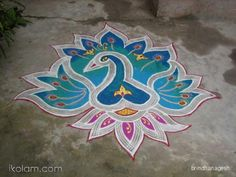 peacock rangoli designs for diwali - Google Search