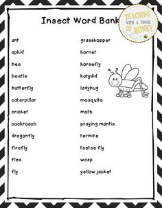 Insect Activities  Problem Solving  Insect Math  CutAndPaste
