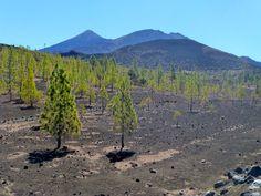 2012 - Mount teide