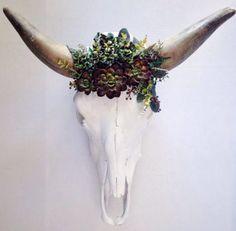 Succulent Cow Horns Skull