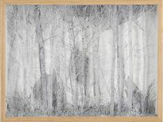 Eva Jospin - Artists - Suzanne Tarasieve