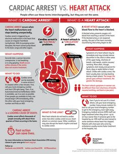 What Causes Heart Attacks, Heart Attack Symptoms, Causes Of Heart Attack, What Is A Heart, Parts Of The Heart, Nursing School Notes, Medical School, Heart Rhythms, Heart Muscle