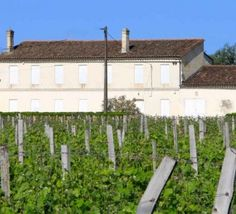 French Ministry of Finance warns against #money laundering through chateaux purchases