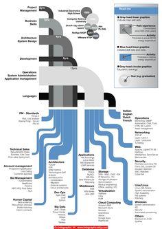Cv Infographic 44 - http://infographicality.com/cv-infographic-44/