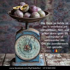 Die Here se liefde vir jou is ontelbaar en onmeetbaar. Niks wat jy kan doen gaan dit verminder of vermeerder nie. Evening Greetings, Good Morning Greetings, Night Prayer, My Prayer, Bible Quotes, Qoutes, Counselling Training, Enjoying The Small Things, Afrikaanse Quotes