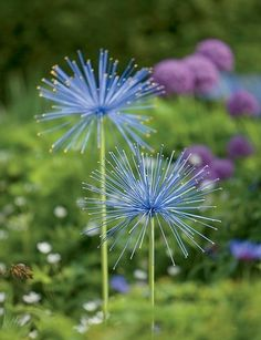 Everlasting Alliums - oversize steel orbs are painted in bright colors and each spike is tipped in gold for added sparkle. two diameter flower heads on slender steel stakes in two heights: and installed. From Gardener's Supply Metal Flowers, Beautiful Flowers, Black Flowers, Hydrangea Care, Humming Bird Feeders, Arte Floral, Front Yard Landscaping, Stone Landscaping, Landscaping Ideas