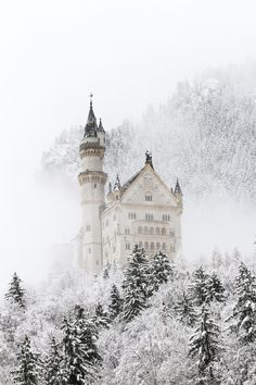 ***Neuschwanstein Castle in snow and fog (Germany) by Yury Slobodyanyuk❄️