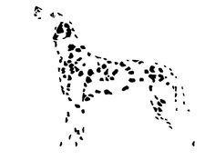 Dalmatian Tattoo