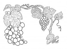 Grapes coloring page from Grapes category. Select from 27260 printable crafts of cartoons, nature, animals, Bible and many more. Mandala Coloring Pages, Coloring Book Pages, Beaded Embroidery, Embroidery Patterns, Vine And Branches, Faith Crafts, Pyrography Patterns, Wine And Canvas, Stencil Patterns