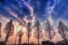 #korea_photos #cloudsandsky #clouds #cloudpark #streetphotography #trees #treepark #sunpark  #landscape #silhouette #travel #traveling #snapshot #photooftheday #bestskyever #wondercaptures #beautiful #beautifulday #recent4recent #likeforlike #streamzoofamily #streamzoo #eyeem #moststunningshot #instalikes by parkjc1