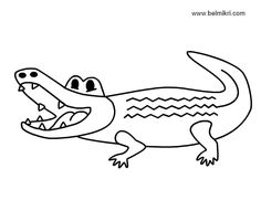 Crocodile Alligator Coloring Pages