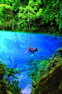 Nanda Blue Hole, Vanuatu. One of the world's most amazing swimming holes featured on Spot Cool Stuff's travel blog:  http://travel.spotcoolstuff.com/nature/amazing-swimming-holes
