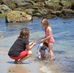la jolla California the beach life~