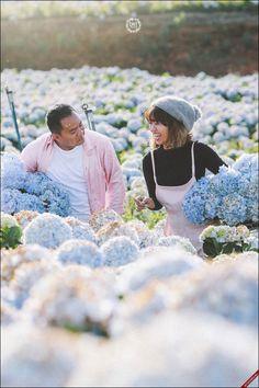 Giới trẻ ngẩn ngơ trước cánh đồng hoa cẩm tú cầu đẹp ngây ngất ở Đà Lạt http://mixtourist.com.vn/cam-nang/tin-tuc-du-lich/gioi-tre-ngan-ngo-truoc-canh-dong-hoa-cam-tu-cau-dep-ngay-ngat-o-da-lat.html