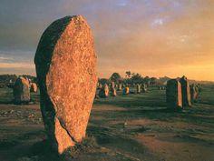 Alignements des Menhirs de Carnac au coucher du soleil - Carnac (56) - France
