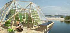 l'ortodimichelle: JellyFish Barge_un orto-serra sul mare<br> Floating Garden, Floating House, Floating In Water, Urban Agriculture, Urban Farming, Aquaponics System, Aquaponique Diy, Greenhouse Farming, Greenhouse Panels