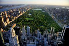 Manhattan - Riu Plaza New York Times Square Hotel – Hotel in New York – Vacations in New York - RIU Hotels & Resorts