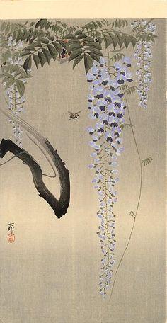 Ohara Koson(小原古邨)「Wisteria and Japanese Painting, Chinese Painting, Chinese Art, Ohara Koson, Japanese Drawings, Japanese Prints, Era Taisho, Art Chinois, Wildlife Paintings
