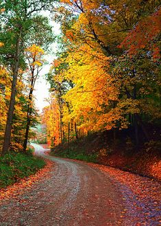 ✯ Country Autumn