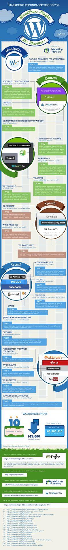 Wordpress Plugins for Small Business #infographic #wordpress  http://passiveonlineincome.biz/pin