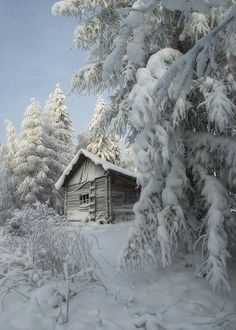 a winter dream of a snow covered cabin Winter Szenen, I Love Winter, Winter Cabin, Snow Cabin, Winter White, Snow White, Winter Months, Winter Season, Winter Mountain