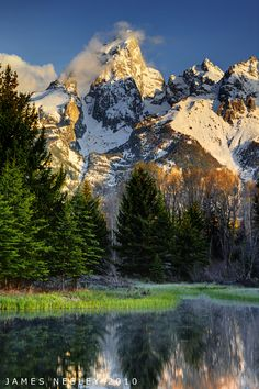 Grand View by James Needly ~ Schwabacher's Landing, Grand Teton National Park, Wyoming