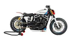HD Sportster Martini Scrambler Shaw Speed & Customs