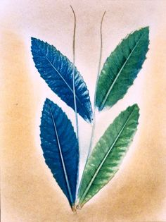 Botanical Art. Original Engraving. Art II. from PaperArcsArt by DaWanda.com