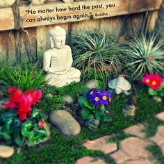 """""""No matter how hard the past, you can always begin again."""" ~ Buddha"""