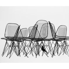 Buy it Now in the Eames Shop: Wire Chairs & Bird Print - Prints