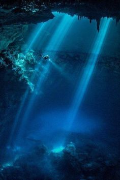 "Scuba diving through rays of sunlight//This looks somewhat like ""The Cathedrals"" off Lanai...but it's somewhere else."