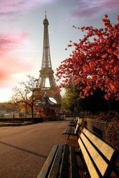 Manhã de primavera na Eiffel Tower, Paris, França - Stock Photo