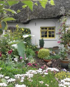 Adare, Co. Limerick.. _____________________________ Do feel free to visit us on http://www.wonderfulireland.ie/ for lots more pictures and stories of Ireland.