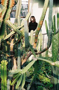 With Ga Young  サボテンが生い茂っているところが好きです。